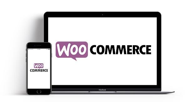 Professioneller Onlineshop mit WooCommerce von eseom