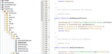 Software Entwicklung Agentur