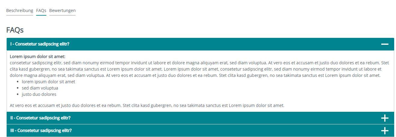 Frontend Darstellung Shopware 6 zusätzliches FAQ-Tab